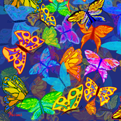 Butterfly_Dreams_MM_on_IndigoF