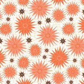 Geometric Cactus Flowers (Sunset)