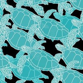 Turtle Migration Aqua on Black