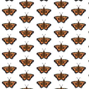 Flutterbyes