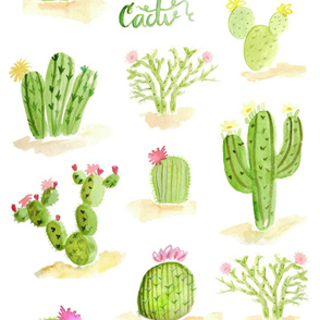 Watercolor tropical cacti flowers