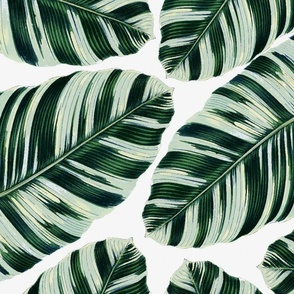 Tropical Foliage Napkins