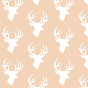 White deer on blush