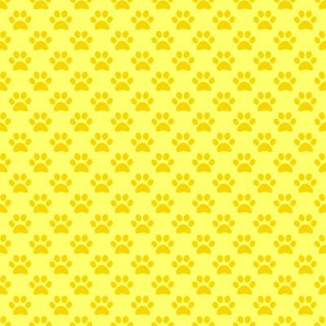 Yellow Paw Prints