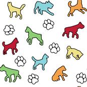 Color Puppies