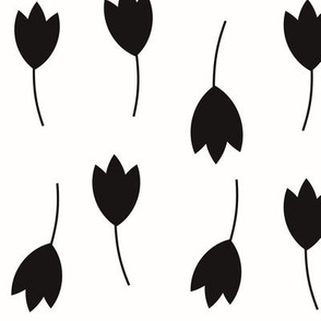 Tulips - monochrome flowers black and white    by sunny afternoon