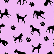 Dog n Paws on Pink