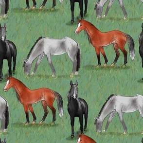 Black Bay and Gray Horses in a field