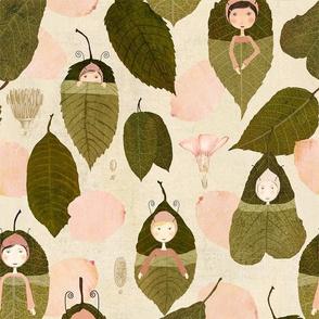 leaf  sleepers