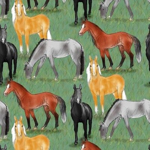 Black Bay Gray and Palomino Horses in field