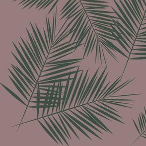 Palm leaves - green on mauve palm tree fern leaves tropical || by sunny afternoon