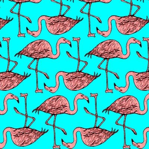 endless flamingos