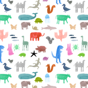 Colorful Wild Animals