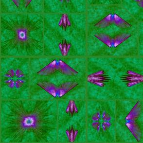 DBN Bug Dreams in Green