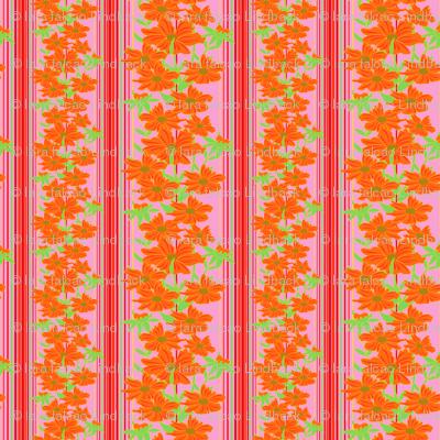 Orangeflowers_preview