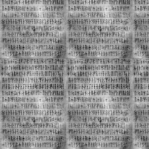 Codex Runicus Greys