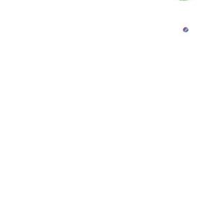Fern the Elephant
