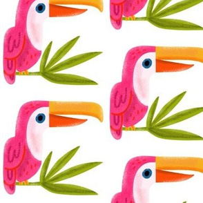 Pink Toucan