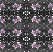Blossom_Coloursplash