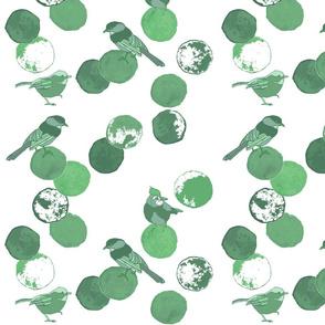 Birds & Dots Mint