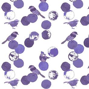 Birds & Dots Violet