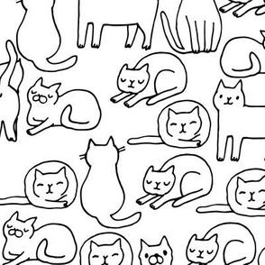 sketchy Cats MEDIUM scale