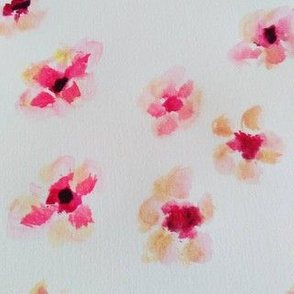 Manuka Flower - Water Colour