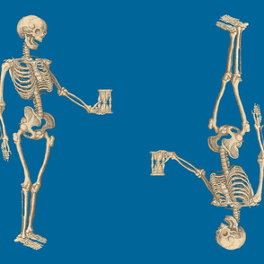 Double Skeletons on Blue Background