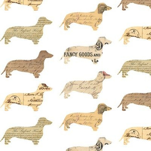 Dachshund Paperback Dogs