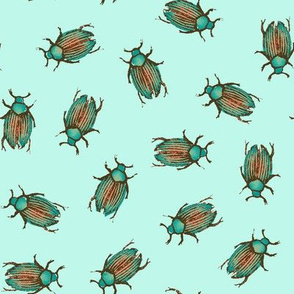 Surfing Beetles