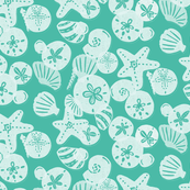 White Shells on Teal