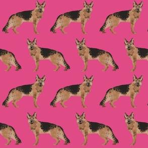 german shepherd dog pink cute pet dog fabric dogs sweet dogs pets