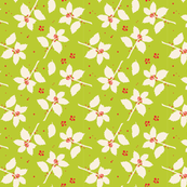 Modern Holly: Lime