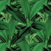 Palm In Palm ~ Jungle Green ~ Medium