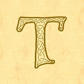 T-parchment-Aleph1