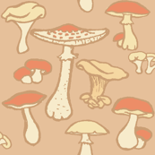 Edible Mushrooms // Pale