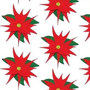 Poinsettia__red_