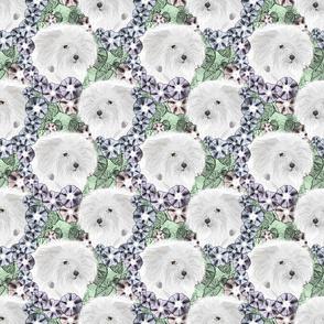Floral Coton de Tulear portraits