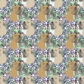Floral Soft coated Wheaten Terrier portraits