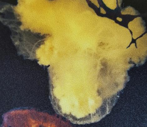 jellyfishdark