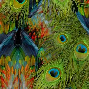 Peacock Nicobar Fantasy