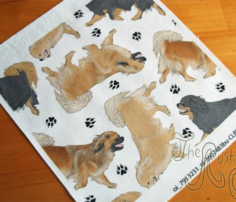 Trotting Tibetan Spaniels and paw prints - white