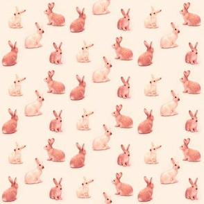 Lots of Bunnies in Peachy