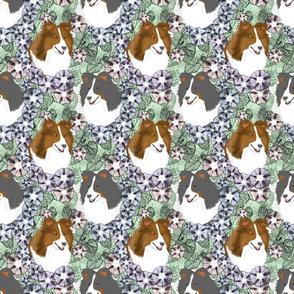 Floral Shetland sheepdog portraits