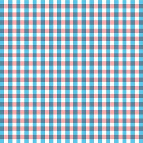 Faded Gingham