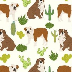 english bulldog cactus cute cacti dog pet dogs cactus pets english bulldogs bulldog