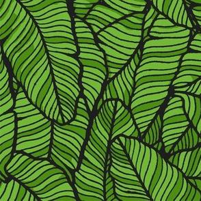 Banana Leaves Tropical Plants