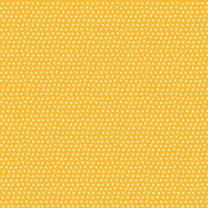 dots orange :: fruity fun