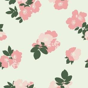 Wild Roses in Cream