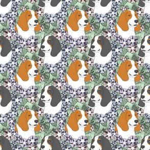 Floral Basset hound portraits